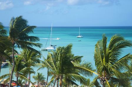 Aruba beach sea palm trees