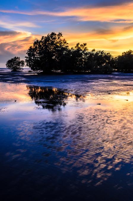 Darwin wetlands Australia