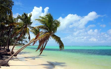 Tropical beach Dominican Republic