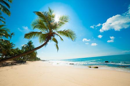 Sri Lanka untouched beaches