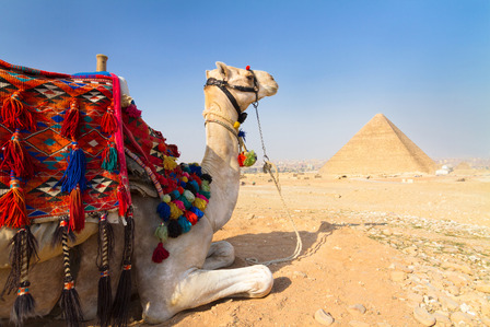 camel riding at egyptian pyramids